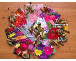 Цветы (128) - интернет-магазин Крассула