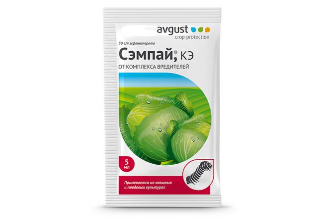 Сэмпай КЭ - интернет-магазин Крассула