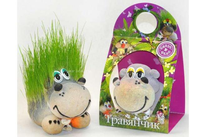 Травянчик Бегемот - интернет-магазин Крассула