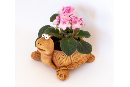 Кашпо цветочное Черепаха