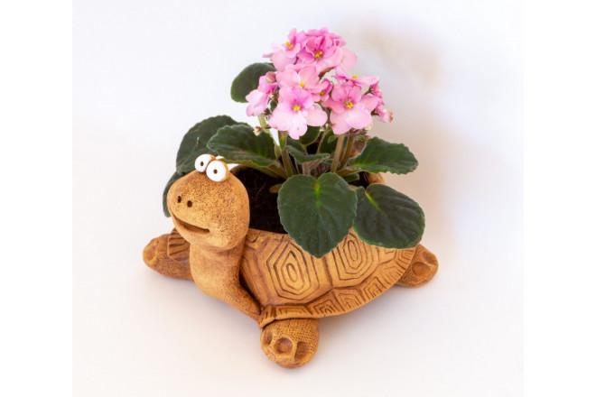 Кашпо цветочное Черепаха - интернет-магазин Крассула