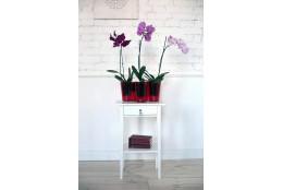 Кашпо для цветов Азалия - интернет-магазин Крассула