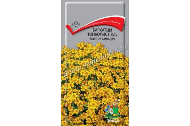 Бархатцы тонколистные Золотой самоцвет - интернет-магазин Крассула