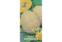 Дыня Алтайская