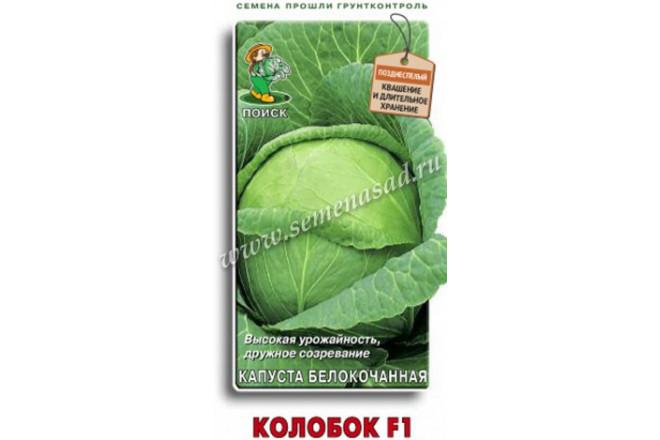 Капуста белокочанная Колобок F1 - интернет-магазин Крассула