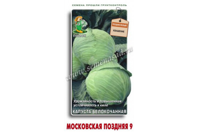 Капуста белокочанная Московская поздняя 9 - интернет-магазин Крассула