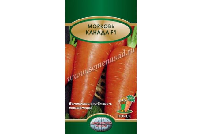 Морковь Канада F1 - интернет-магазин Крассула