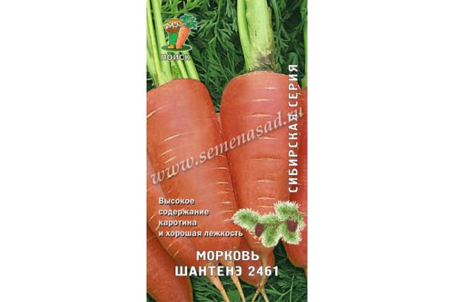 Морковь Шантенэ 2461 - интернет-магазин Крассула