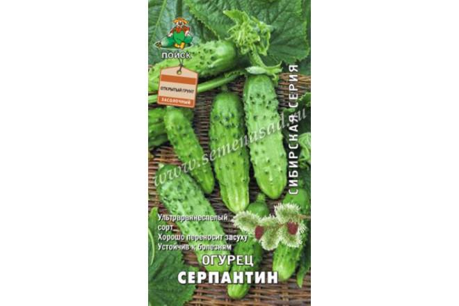 Огурец Серпантин - интернет-магазин Крассула