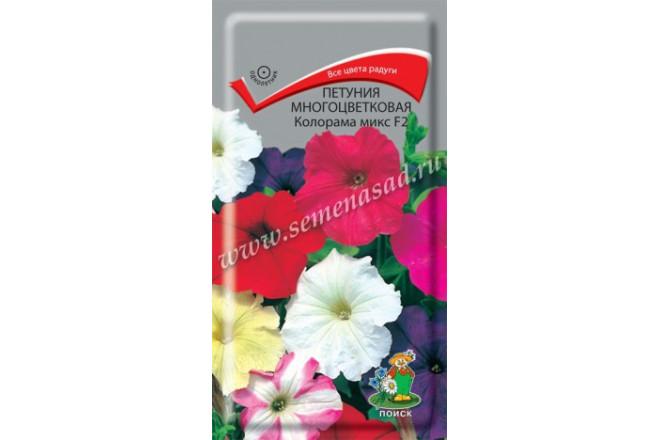 Петуния многоцветковая Колорама микс F2 - интернет-магазин Крассула