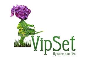 Логтип VipSet